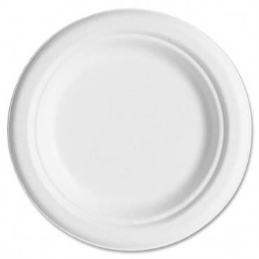 https://www.ebay.com/p/Eco-Products-Epp016pk-Compostable-Sugarcane-Dinnerware-6-Plate-Natural-White/1700065172