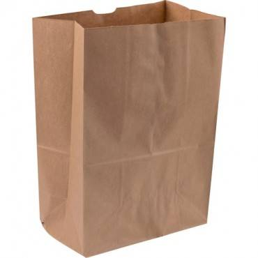 Duro Tall Paper Grocery Bags (CA/CASE)