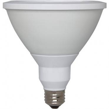 GE PAR38 LED Light Bulb (CA/CASE)