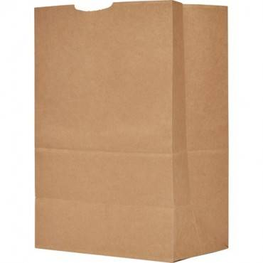 AJM Packaging Grocery Sacks (CA/CASE)
