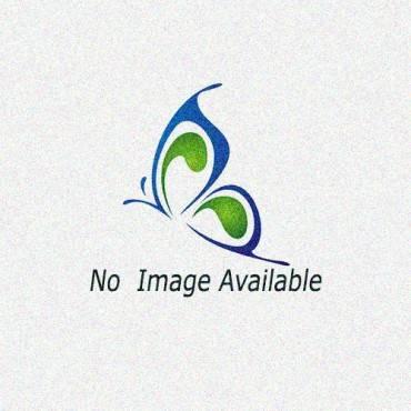 RAPI KOOL (VERSION 1) REPLACEMENT CAPS
