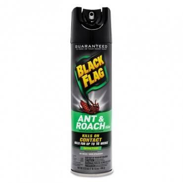 Diversey  BLACK FLAG ANT & ROACH KILLER, 17.5 OZ, AEROSOL CB110339 1 Each