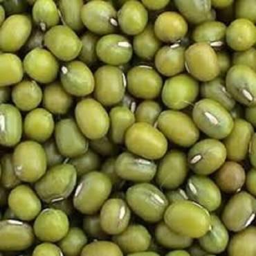Bulk Peas And Beans - Organic Mung Beans - 25 Lb.