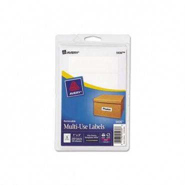 Removable Print-or-write Multi-use Labels, 1 X 3, White, 250/pack